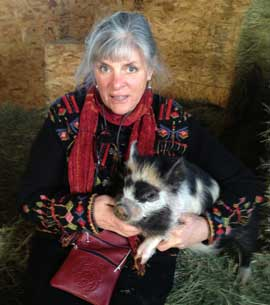 The owner holding a Kunekune piglet