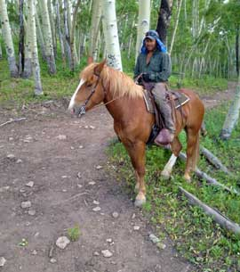 A Belgian draft horse with his owners in the high aspen forests