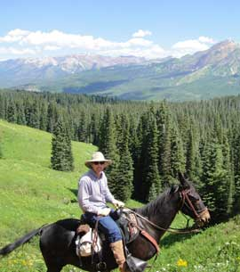 A mule and his owner posing in the high country in summer